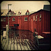 Rainy Day Red Sheds by helle-belle