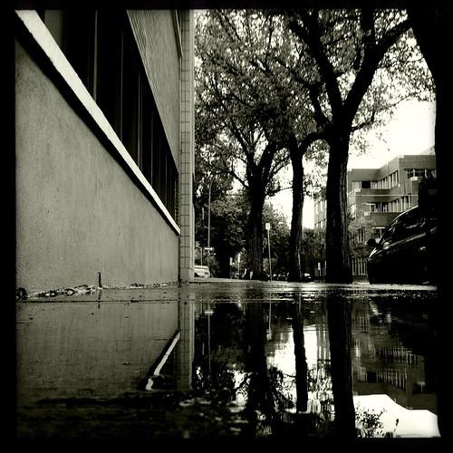 wet sidewalk 1