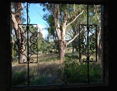 A Little Piece of New South Wales in the Frame! (antonychammond) Tags: trees sky window landscape australia frame newsouthwales grille blueribbonwinner supershot beautifulphoto estremità