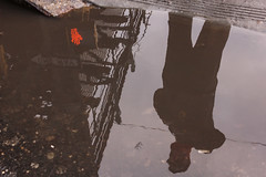 Don't Walk (Valentinian) Tags: nyc newyorkcity reflection puddle queens elevatedtrain rooseveltavenue
