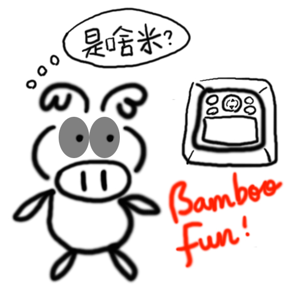 090108_00_BumbooFun
