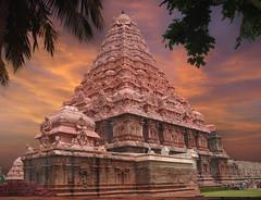 temple rose - gangaikondacholapuram.JPG (xsalto) Tags: gangaikondacholapuram