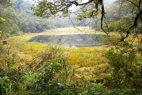 枯水期的崙埤池