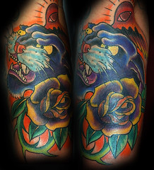 coveruppanther