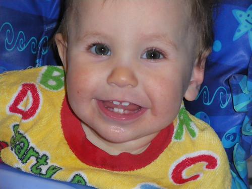 Look at Those Teeth!