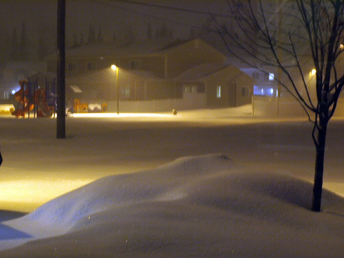 snowfall feb 5 2009