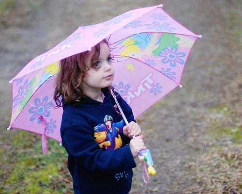 v umbrellas in the rain 074
