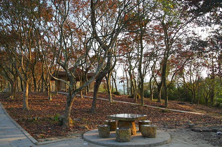 關仔嶺紅葉公園24