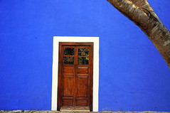 Blue wall, Wooden Door and a tree (noamgalai) Tags: wood tree home mexico hotel photo wooden apartment room picture photograph bluewall izamal   woodendoor  noamg noamgalai   sitelandscapes sitemisc sitemain