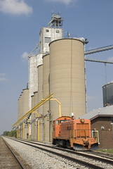 Thomasboro (M. Lastovich) Tags: cn ic illinois critter elevator grain trains canadian national railroads switcher emd sw1200 thomasboro