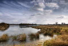 England: Northamptonshire - Spacious (Tim Blessed) Tags: uk sky nature water clouds reeds landscapes countryside scenery lakes wetlands grasses ponds singlerawtonemapped