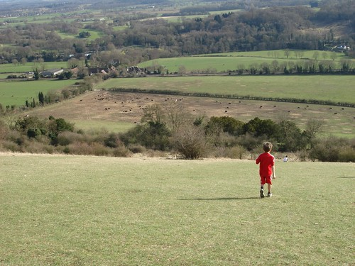 Young son admiring view from Box Hill, Surrey
