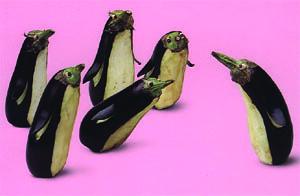 vege penguin
