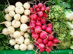 Le marché: radis