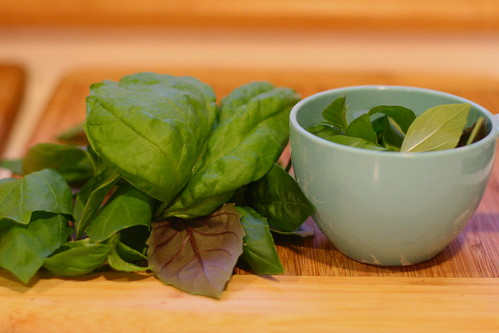 Mixed Basil for Pesto