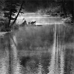 Myst (josefontheroad) Tags: perception galeria alberta inspire canmore legacy brava artisticphotography goldenring favoritepictures imitationoflife thegoldengallery sailthesevenseas imagepoetry beautifulshot justimagine artdigital bobsyouruncle bluemoonrising photographydigitalart excellentphotographer empyreanland magiclandscape absoluteblackandwhite natureselegantshots favoritesofmyfavorites absolutelystunningscapes thelightpainterssociety photographyanddigitalart zuzkasfaves absolutegoldenmasterpiece thecubeexcellencygallery capturethefinest musicsbest worldsartgallery artfortheart thefriendsofelbrujo eyezoomesthetique papascave anthologyofbeauty daarklands oracoob oracope splendidpictures finestimages themasterlightpainter thelightpainterssocietygold magicuniverse fanniesyouraunt ~thesecretgarden~ 4msphotographicdream boxofhappymemories richardstopgallery flickrvault magicunicornverybest selectbestfavorites trolledproud coppercloudsilvernsun ~thesecretgarden50~ kunstgriffskunstgriffe magicianssquare