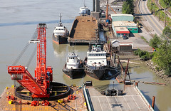 barge and tugs (waferboard) Tags: river tugboat fraser barge newwestminster