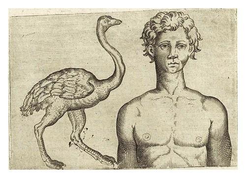 012-De humana physiognomonia- Giambattista della Porta 1586