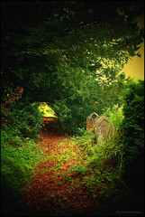 The journey continues... (Autumnsonata) Tags: trees light abandoned nature overgrown beauty graveyard wales landscape path memories headstones graves forgotten churchyard gravestones
