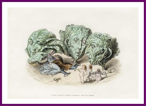023-Drôleries végétales, ou L'Empire des légumes- Pierre Amédée Varin