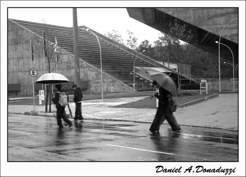 Num dia de chuva