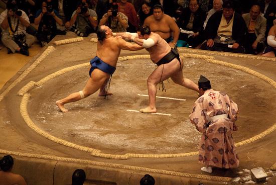 sumo_wrestling_5909