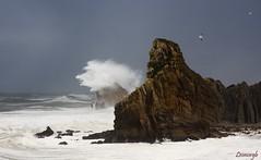 Mejores vistas?........las gaviotas (Leonorgb) Tags: costa canon mar olas gaviotas temporal rocas cantabria leonor liencres arnía