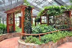 Greenhouse Foundation Walkways
