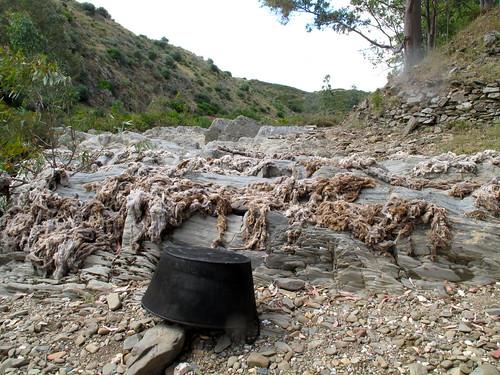 Nas águas da ribeira