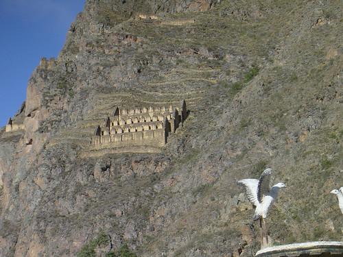 Inca qollqa on the hill opposite the Sun Temple, Ollantaytambo