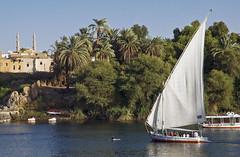 Assuan_2008_045 (pepebraulio) Tags: egypt afrika nil luxor abusimbel komombo edfu assuan nubie theben nubien gypten