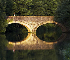 The Quiet Countryside (Nilson Bazana) Tags: bridge two nature calm symmetry immersive getty symmetric reflexions archs halfhalf jogger placid immersion equal endofday sidelight twohalves scenicsnotjustlandscapes wixstreetphotography wixstreet wixall wixbazana wixoutdoors wixnature wixlandscape