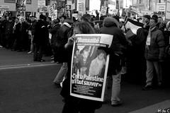 ENOUGH... (h de c) Tags: paris france march israel war peace killing massacre palestine innocent protest crime murder guerre marche gaza paix tuerie meurtre gazapalestineisraelmarchprotestparisfrancemassacrekillingmurderinnocentwarcrimepeacemarchetueriemeurtreguerrepaixsalamshalom