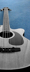 Blue Bass (The Funky Munky) Tags: bass acoustic bassguitar musicalinstruments colourspotting