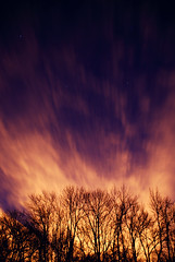 (chris johnson.) Tags: trees light tree stars jack favorites celebration favourites kit olio grene fincut sonyalphadslra200 bluredmotion bluredaction favorites2009 kitgrene khristphoros