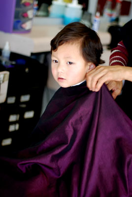 apprehensive haircut