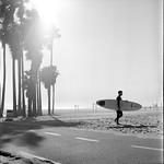 a californian winter day