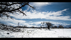 "Lasithi (Spyros_Tav__""Smile: it's contagious"") Tags: winter white snow landscape creta greece crete lashiti goldstaraward"