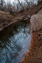 Deep Fork NWR - Coalton Bottoms (Coalton, Oklahoma, United States) Photo