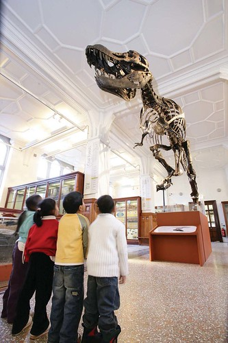 Image, Come visit Stan in our Prehistoric LIfe Gallery