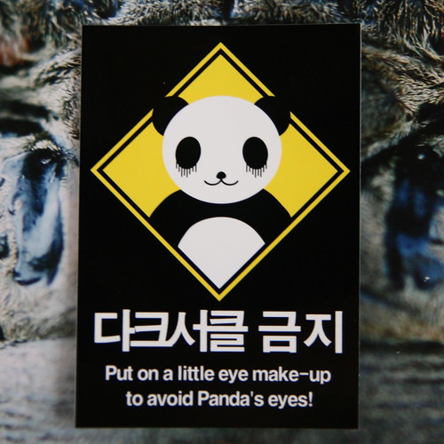 Panda's Eyes