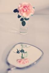 beauty (*Azzari) Tags: beauty rose mirror shotglass explored gabriellekaiphotography
