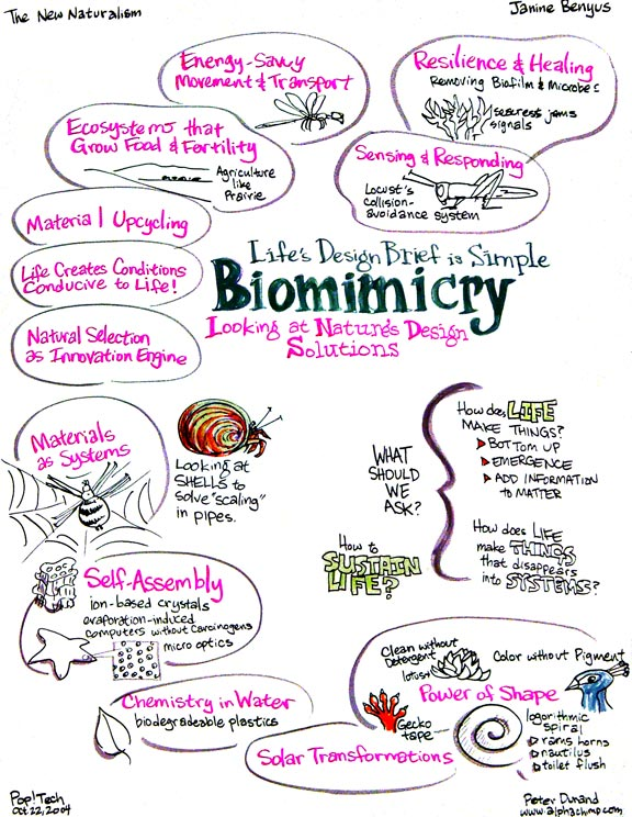 Jeanine Benyus, Biomimicry
