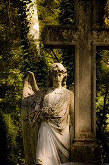 Untitled (.sxf) Tags: sculpture friedhof cemeteries loss cemetery grave graveyard statue angel death cross skulptur kreuz angels marble engel grab tod statuen sculptures grief trauer marmor grber skulpturen friedhfe verlust