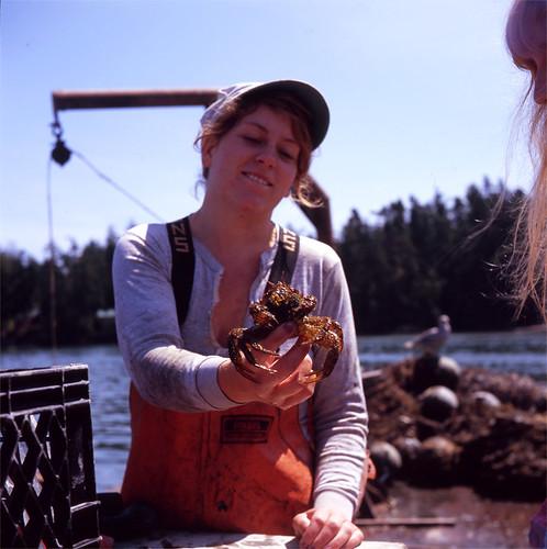 Dagmar, Crab