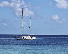 Abandoned Sailboat (vgm8383) Tags: abandoned beach water coral sailboat canon polynesia sand ship lagoon 5d tahiti reef archipelago mkii kiaora anchored rangiroa frenchpolynesia tuamotu tuamotuarchipelago canon5dmkii 5dmkii