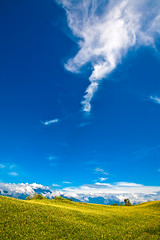 Dialogue 對話 (olvwu | 莫方) Tags: mountain flower field farm taiwan daylily bud hualien picking hemerocallis jhutian liliaceae fuli jungpangwu oliverwu oliverjpwu orangedaylily olvwu goldenneedle hualiencounty sixtystonemountain jungpang hemerocallisfulvalinn fulitownship fulvousdaylily jhutianvillage