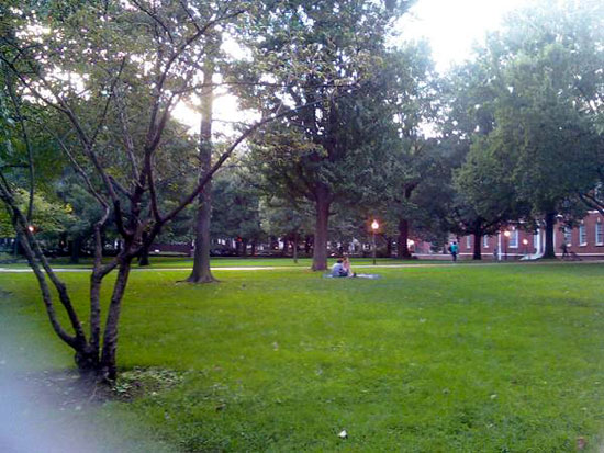 Park Behind First Bank (Click to enlarge)