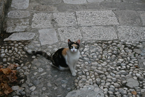 Croatia_0105