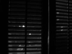 close to you 015 (dadou2007) Tags: closetoyou